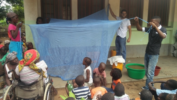 Mosquito nets and collective impact